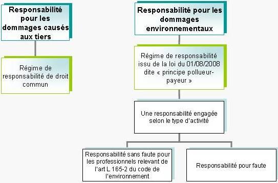 Schéma responsabilité atteinte à l'environnement